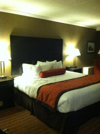 BEST WESTERN PREMIER Nicollet Inn: King Bed Room