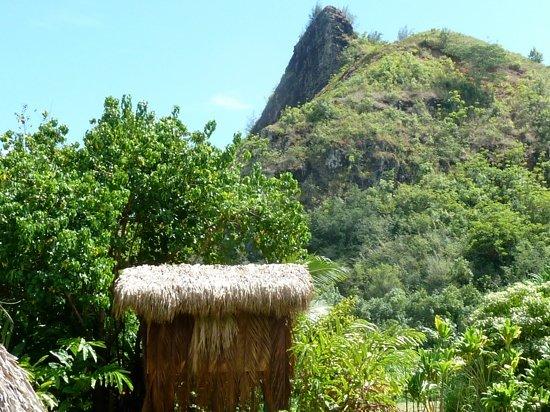 Kamokila Hawaiian Vllage: kamokila