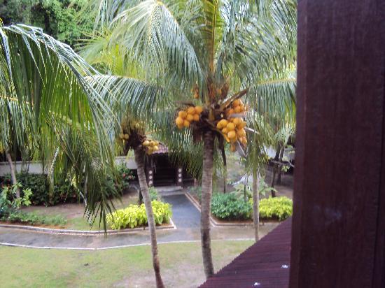 The Lanai Langkawi Beach Resort: through room's window4