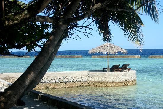 Ellaidhoo Island Resort Tripadvisor
