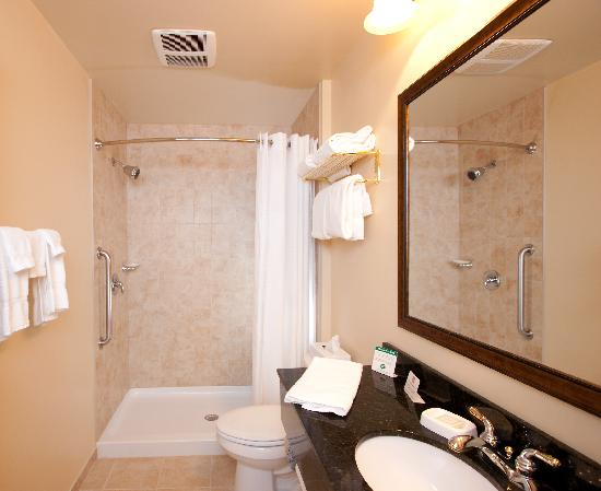 BEST WESTERN PLUS Vineyard Inn & Suites: Spacious Guest Room Bath