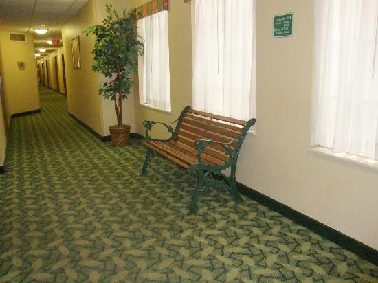 TownePlace Suites Bloomington: Hall Way