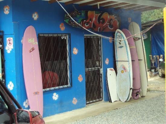 Uvita 360: Uvita Surf Camp - head office