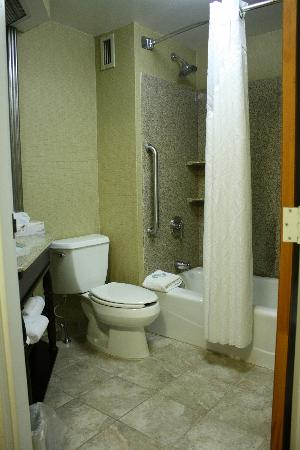 Holiday Inn Express Wilkes Barre East : Clean Bathroom