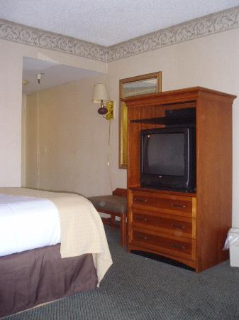Holiday Lodge Hotel & Conference Center: Television