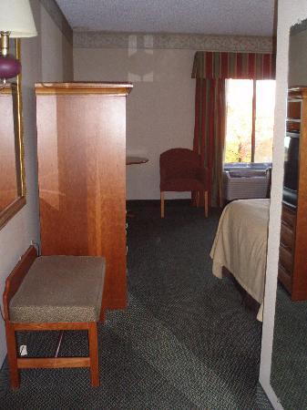 هوليداي لودج هوتل آند كونفرنس سنتر: Room