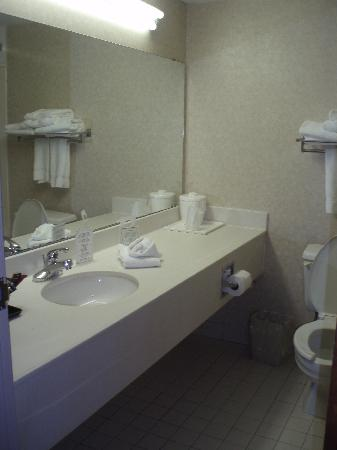 Holiday Lodge Hotel & Conference Center: Bath