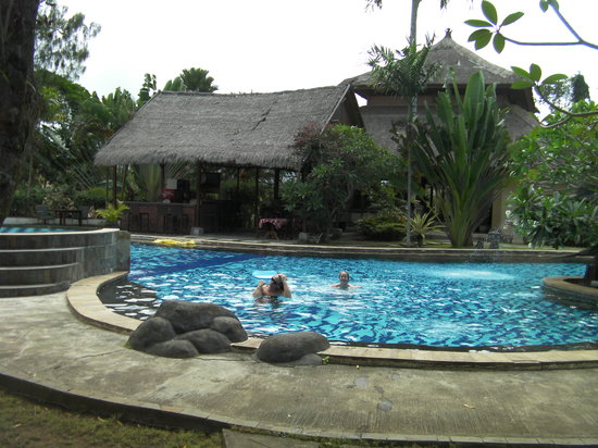 Dewi Sartika Hotel : The pool