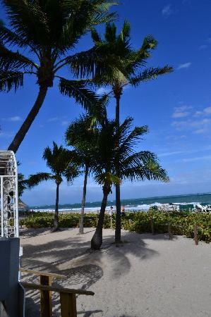Beachcomber Resort and Villas: Grounds