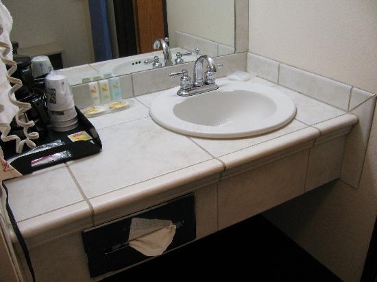 كواليتي إن آند سويتس إيربورت: Bathroom