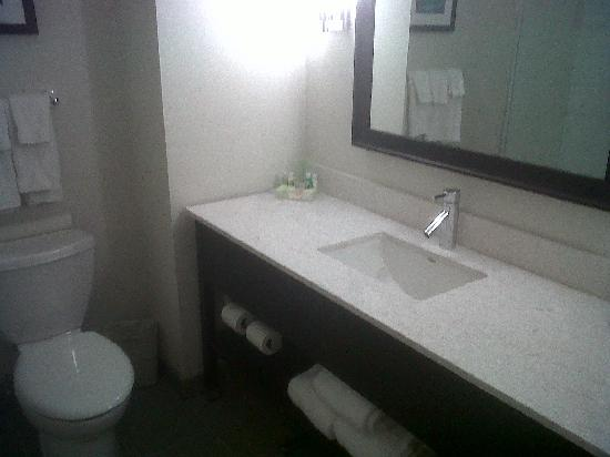 Holiday Inn Hotel & Suites Red Deer South: Washroom - doesn't show the shower, no tub