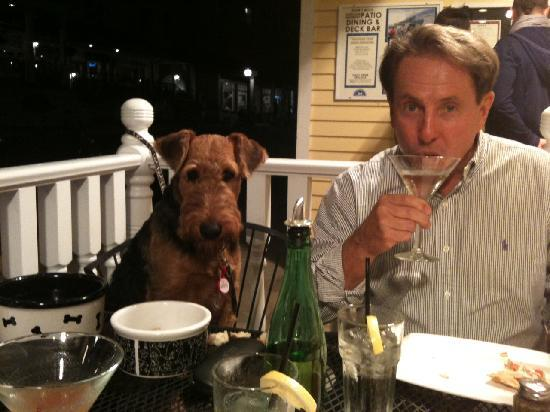Mary's Bistro Draught House: The picture tells it all - Rufus, our 6 month old Airedale, had an outstanding dining experience