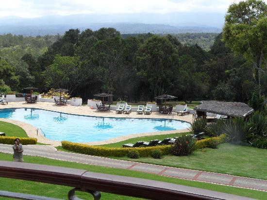Fairmont Mount Kenya Safari Club: The pool and view are fabulous.