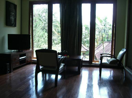 Suara Air Luxury Villa Ubud: A tv area