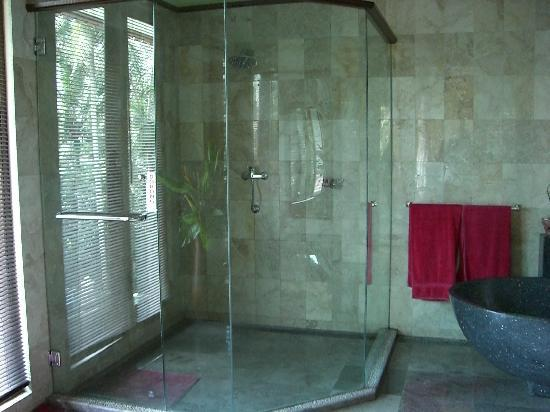 Suara Air Luxury Villa Ubud: The shower