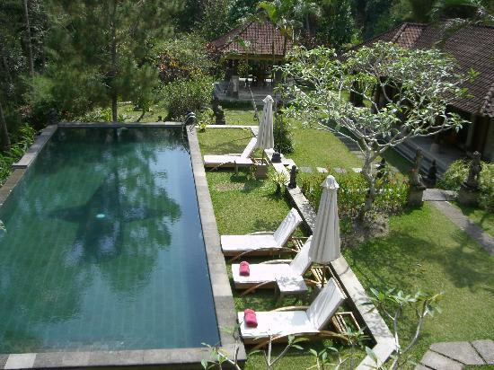 Suara Air Luxury Villa Ubud: The pool