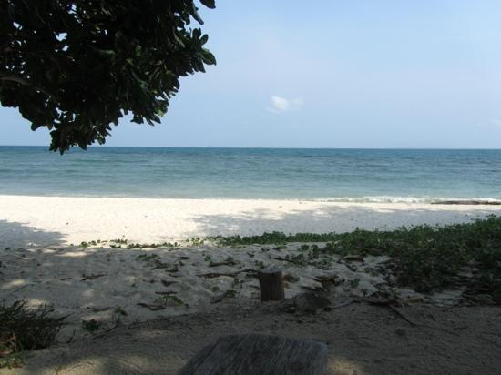 Nikoi Island: The beach