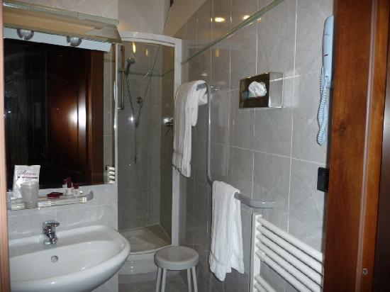 Hotel Fonte Cesia: Small & wierd layout of bathroom with standing shower only.