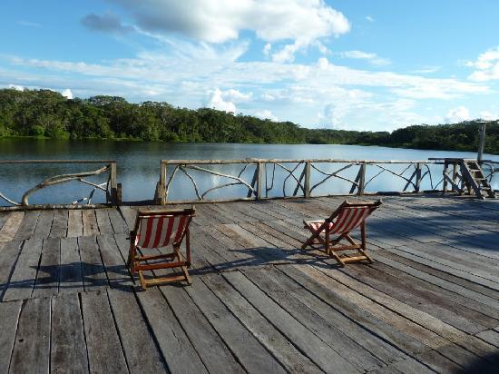 Sacha Lodge: Sit or swim