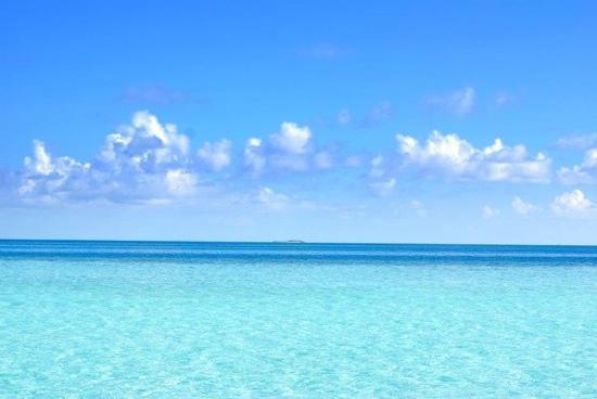 Best Hotels In Clear Water Beach