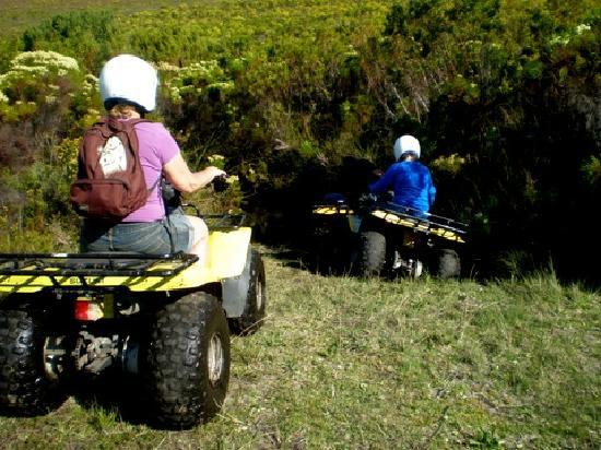 Quad Explore Nature Trails : Heading for the mud hole!