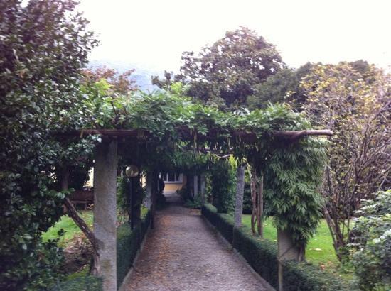Park Hotel Villa Belvedere: Garten
