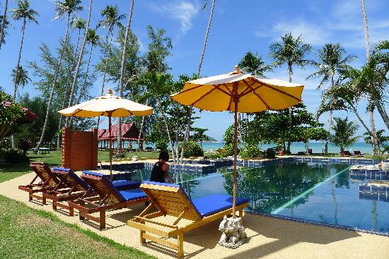 Viva Vacation Resort: プール