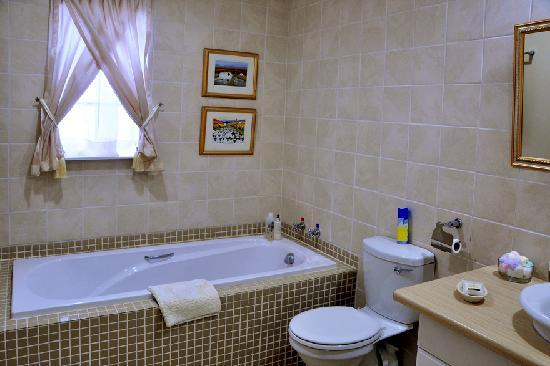 Shandon Lodge: Bathroom (walk-in shower not shown)