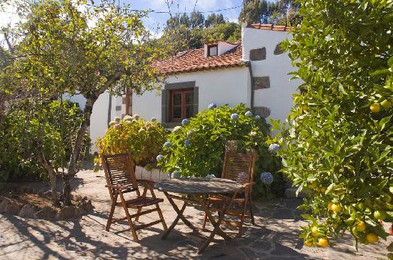 Finca Casa Nanita : Terraza