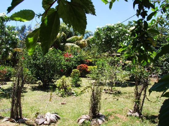 L'Auberge de Nadege : le jardin