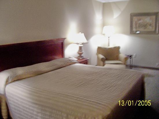 Warwick Inn & Suites: King Size Room