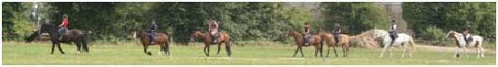 Annaharvey Farm Bed and Breakfast: Horse riding