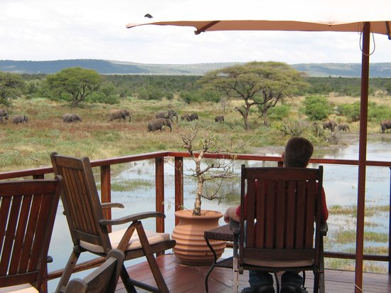 Tau Game Lodge: Viewing Deck