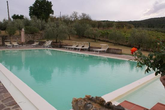 Podere Bellavista: swiming pool