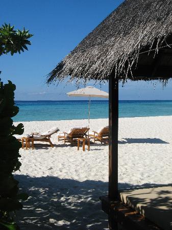 Four Seasons Resort Maldives at Landaa Giraavaru: a room with a view