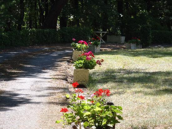 Vacquiers, Francia: Notre chemin