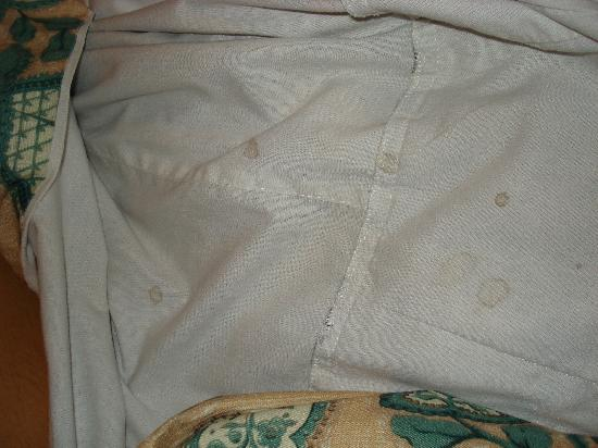 Hotel Erzsebet City Center: Bed stains