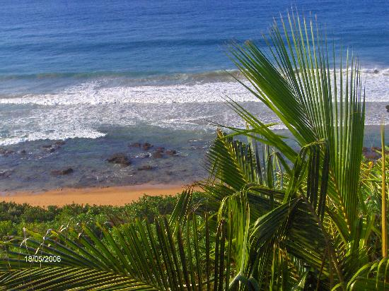 African Peninsula Guest House: View from Guest House