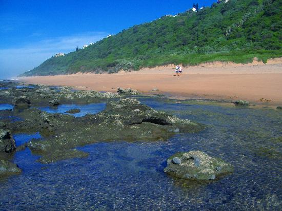 African Peninsula Guest House: Our beaches, rock pools & dune forests