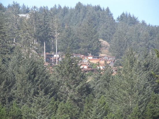 Whaleshead Beach Resort: shot of the cabins from the beach, zoomed in a little.