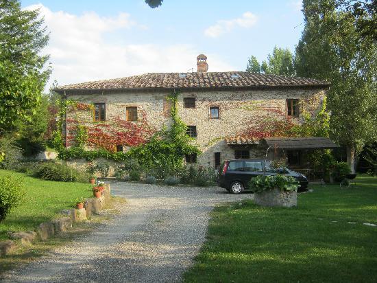 Il Mulinaccio : View from the driveway