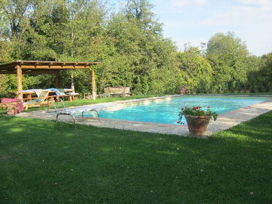 Il Mulinaccio : The pool
