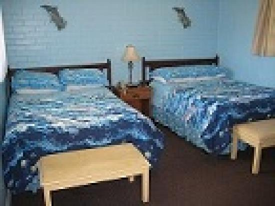 Dixie Belle Motel : Comfy, clean, beachy rooms
