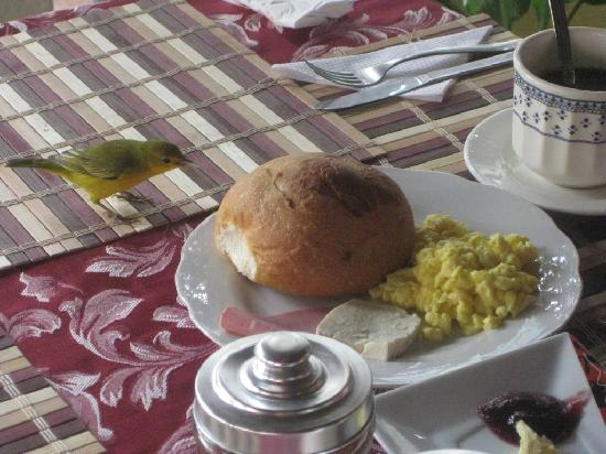 Santa Cruz, Équateur : Desayunando en el hotel con visitas