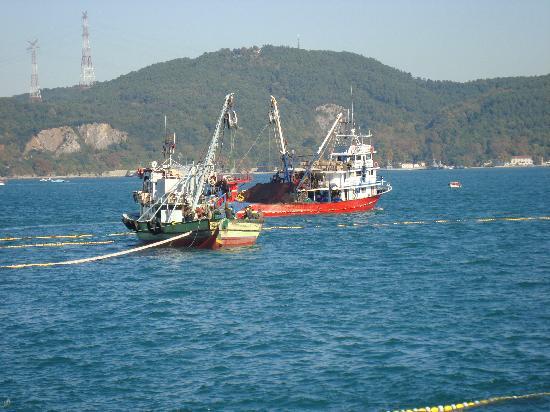 بست ويسترن إمباير بالاس: Pesca en el Bósforo