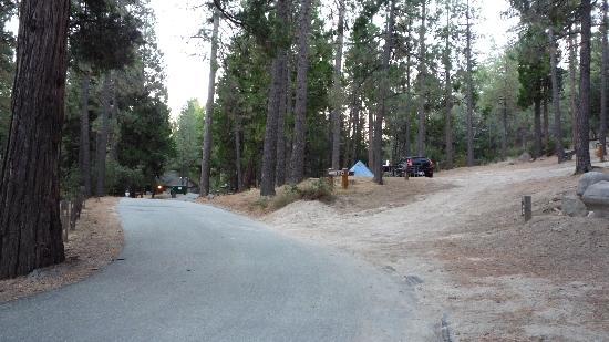 Mount San Jacinto State Park and Wilderness: Idyllwild Park