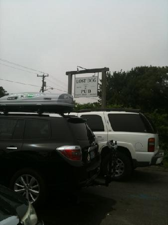 Lost Dog Pub: road side sign