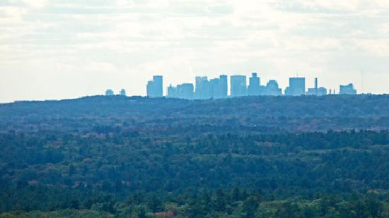 Ward Reservation: Boston Skyline