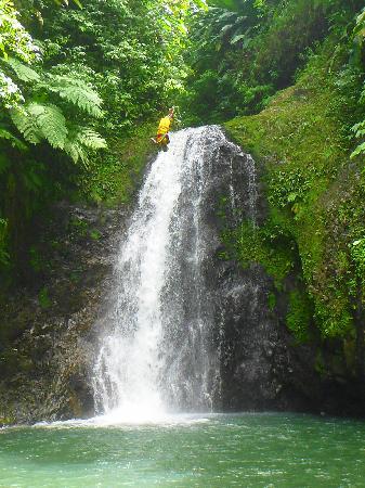 Grand Etang National Park, Grenada: Diver