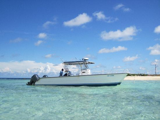 Peterson Cay: Petersons Key Trips